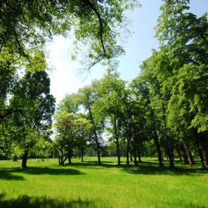 Picturesque parks full of greenery